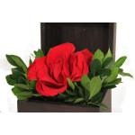 Báu com uma linda rosa vermelha